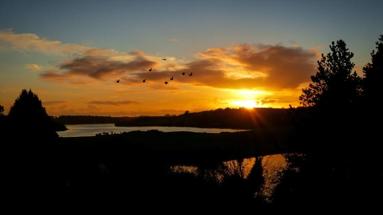 Impressionen West Cork (1 von 1)