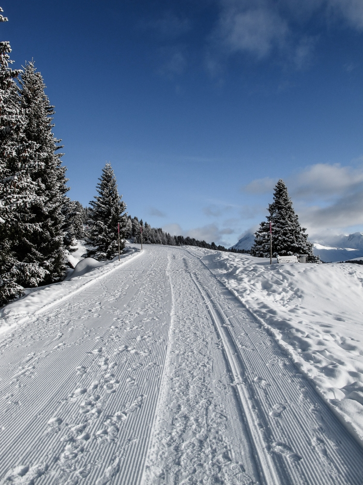 Winterwanderwege Arosa