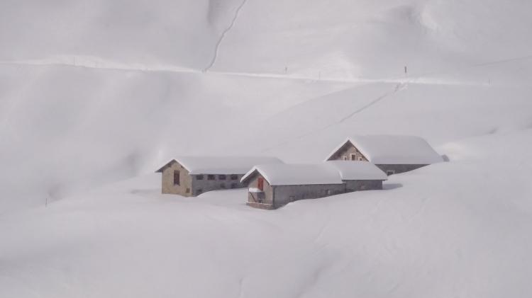 nach dem grossen Schneefall Arosa-1100051