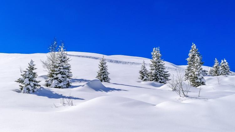 nach dem grossen Schneefall Arosa-1100179-2