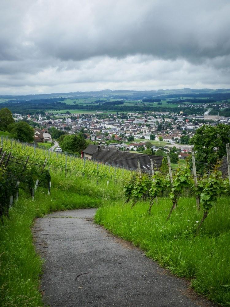 Solaris Weinfelden (1 von 1)-8
