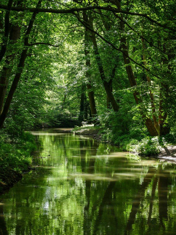 Reise Regensbrug Bayern (1 von 1)-354