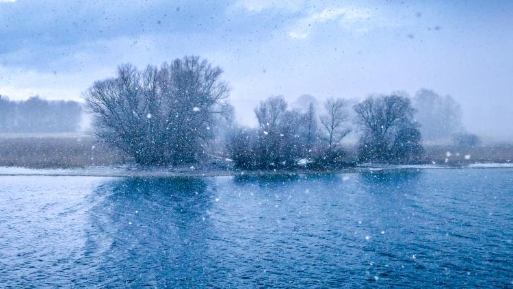 Schneegestöber am Seerhein (Januar 2017)