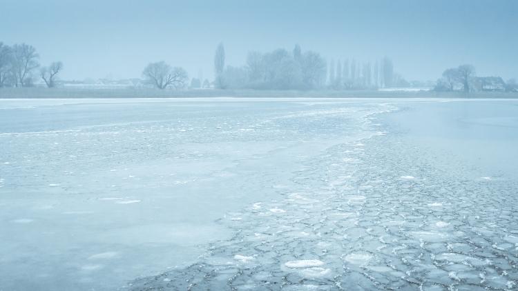 Pfannkucheneis Reichenau Untersee Lake Constance Pancake Ice Bodensee