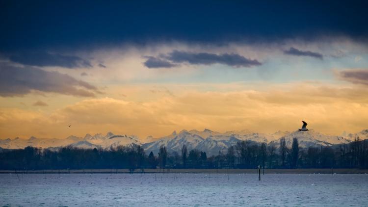 Föhn Berge Untersee Alpenblick