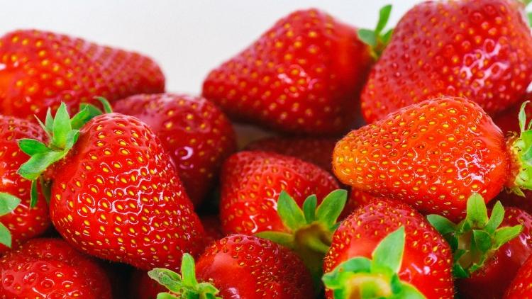 Thurgauer Erdbeeren - frisch vom Feld